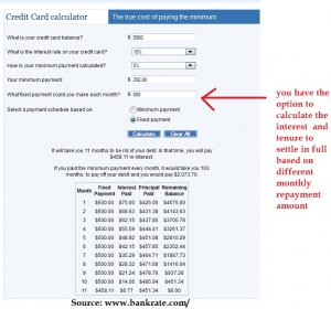 Cash Advance Interest Calculator