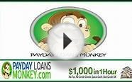 No Credit Payday Loans